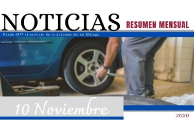Revista N.º 10 FEDAMA – Noviembre
